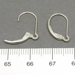 Brisyr för varierbart örhänge sterling silver
