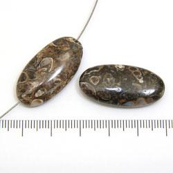 Oval pärla i turritella-agat 30 x 15 x 7,5 mm