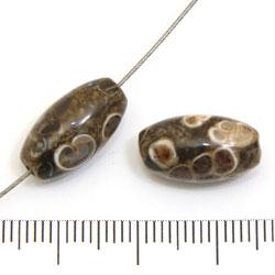 Risformad pärla i turritella-agat 16 x 8 mm